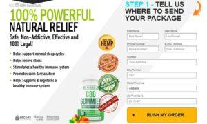 Bio Wellness CBD Oil 2
