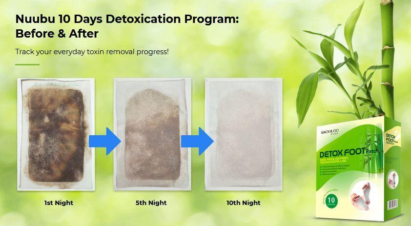 Nuubu Detox Patch 1
