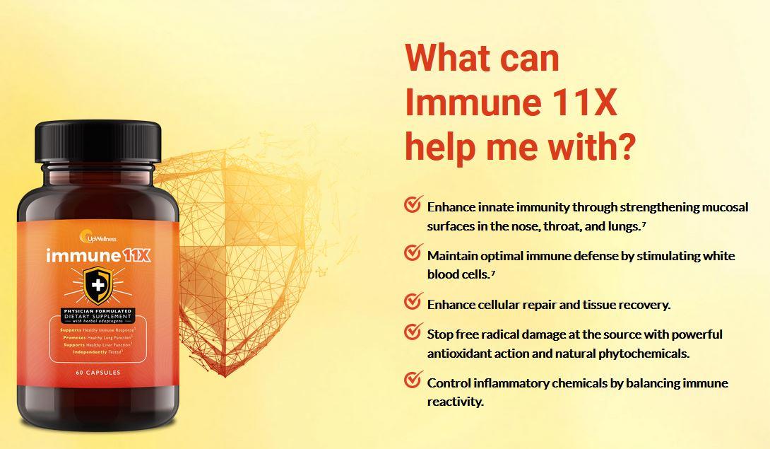 Immune 11X 1