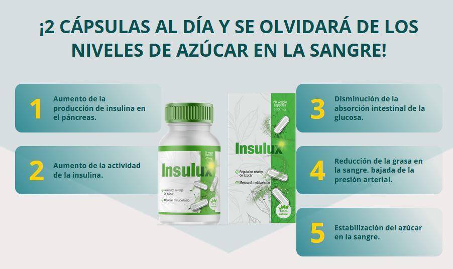 Insulux 1